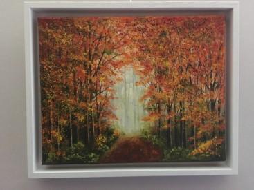 Walk through the Autumn woods