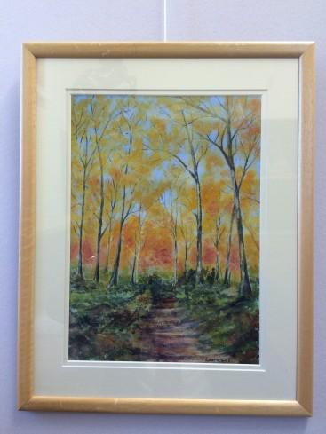 Beechwood in Autumn sunshine