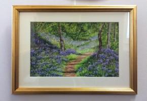 Sunlit bluebell walk