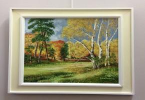 Silver birches (Burnham Beeches)